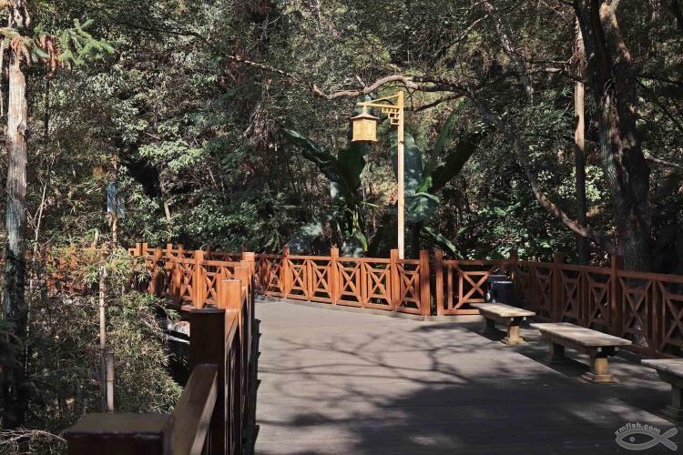 [06-23]龙岩莲花山公园_21920795