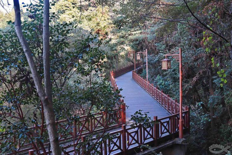 [06-23]龙岩莲花山公园_21920796
