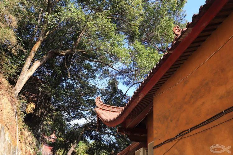 [06-23]龙岩莲花山公园_21920801