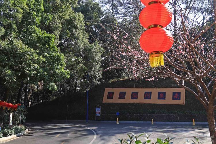 [06-23]龙岩莲花山公园_21920807