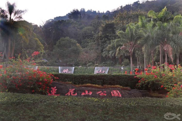 [06-23]龙岩莲花山公园_21920810